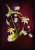 muzykalna ladybirds notatka Zdjęcie Royalty Free
