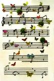 Muzykalna notatka Obrazy Stock