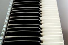 Muzykalne klawiatury Zdjęcie Royalty Free