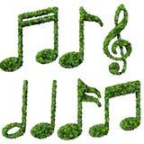 Muzykalne notatki, symbol robić od zieleń liści odizolowywających na białym tle 3 d czynią Obrazy Stock