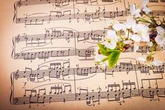 Muzykalny tło z wiosna kwiatami obraz royalty free