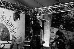 Muzyki I poezi festiwal Zdjęcia Royalty Free