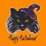 The muzzle of a black cat with yellow eyes, in a witch hat. Lettering `Happy Halloween`. The muzzle of a black cat with yellow eyes, in a witch hat. Poster Stock Photography