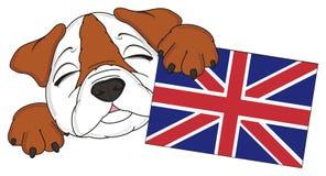 Muzzle of bulldog with flag Royalty Free Stock Photos