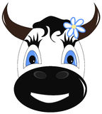 Muzzle of a cow Royalty Free Stock Photo