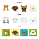 Muzzle of different breeds of dogs.Collie breed dog, lobladore, poodle, boxer set collection icons in cartoon,outline. Flat style vector symbol stock Stock Image