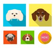 Muzzle of different breeds of dogs.Dog breed of dachshund, lapdog, beagle, pug set collection icons in flat style vector Stock Photos