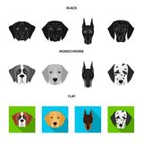 Muzzle of different breeds of dogs.Dog of the breed St. Bernard, golden retriever, Doberman, Dalmatian set collection. Icons in black, flat, monochrome style Royalty Free Stock Images