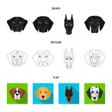 Muzzle of different breeds of dogs.Dog of the breed St. Bernard, golden retriever, Doberman, Dalmatian set collection. Icons in black,flat,outline style vector Royalty Free Stock Image