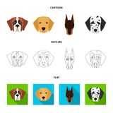 Muzzle of different breeds of dogs.Dog of the breed St. Bernard, golden retriever, Doberman, Dalmatian set collection. Icons in cartoon,outline,flat style Royalty Free Stock Photo