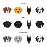 Muzzle of different breeds of dogs.Dog of the breed St. Bernard, golden retriever, Doberman, Dalmatian set collection. Icons in cartoon,black,monochrome style Royalty Free Stock Image