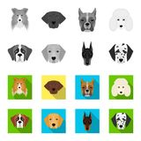 Muzzle of different breeds of dogs.Dog of the breed St. Bernard, golden retriever, Doberman, Dalmatian set collection. Icons in monochrome,flat style vector Stock Image