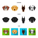 Muzzle of different breeds of dogs.Dog of the breed St. Bernard, golden retriever, Doberman, Dalmatian set collection. Icons in cartoon,black,flat style vector Stock Images