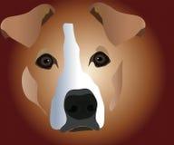 Muzzle of dog. Image of muzzle CU of home mammal of dog royalty free illustration