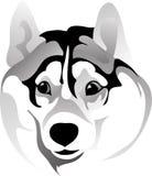 Muzzle förvånade hundteckningen Vektor Illustrationer