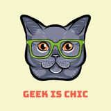 Muzzle of gray cat wearing in glasses. Cat geek. Vector illustration. Muzzle of gray cat wearing in glasses. Cat geek. Geek is chic. Vector illustration vector illustration