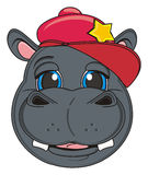 Muzzle of hipo in cap. Muzzle of happy hippo in red cool cap Stock Image