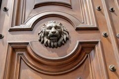 The muzzle of lion on old wooden door Stock Photos