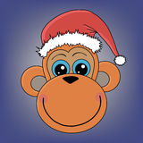 Muzzle monkeys. The muzzle monkeys in Christmas hat Royalty Free Stock Photos