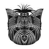 Muzzle of a pet, a hairdress dog with a bow. Pet ,dog care single icon in black style vector symbol stock illustration Royalty Free Stock Photography