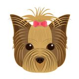 Muzzle of a pet, a hairdress dog with a bow. Pet ,dog care single icon in cartoon style vector symbol stock illustration Stock Photo