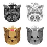 Muzzle of a pet, a hairdress dog with a bow. Pet ,dog care single icon in cartoon style vector symbol stock illustration Stock Image