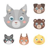 Muzzles of animals cartoon icons in set collection for design. Wild and domestic animals vector symbol stock web Royalty Free Stock Photos