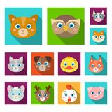Muzzles of animals flat icons in set collection for design. Wild and domestic animals vector symbol stock web. Muzzles of animals flat icons in set collection Royalty Free Stock Photo