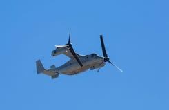 MV-22白鹭的羽毛航空器 库存图片
