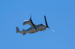 Mv-22 visarendvliegtuigen stock afbeelding