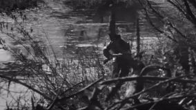Myśliwego bieg przez lasu zdjęcie wideo