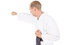 Myśliwska spełnianie karate postawa zdjęcie stock
