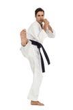 Myśliwska spełnianie karate postawa fotografia stock