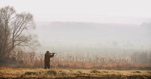 Myśliwy w łowieckim wyposażenia spojrzeniu przy celem z i celem strzału pistoletem w śródpolnym mgłowym ranku i lasem na horyzonc zbiory wideo