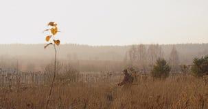Myśliwy w łowieckim wyposażeniu z karabinem w jego ręce kraść przez suchej trawy w polu Wschód słońca światło i mgłowy krajobraz zbiory wideo