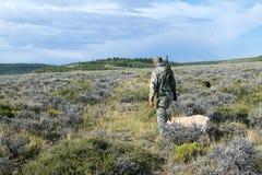 Myśliwy z psim odprowadzeniem przez pola dla tropić Obraz Royalty Free