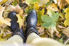 My autumn view. Autumn fashion abstract Royalty Free Stock Images