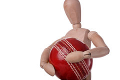 My ball. Mannequin carrrying a cricket ball Royalty Free Stock Image