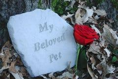 My Beloved Pet Memorial Stock Images