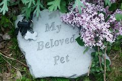 My Beloved Pet Memorial with Lilacs royalty free stock photography
