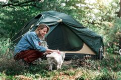 Joyful young woman playing with dog in nature royalty free stock photography