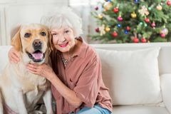 Cheerful senior lady is enjoying time with her pet stock images