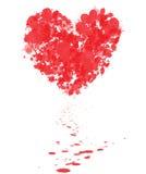 My Bleeding Heart Royalty Free Stock Photos