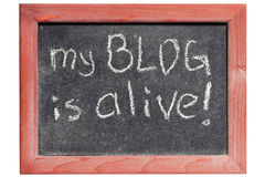 My blog is alive Royalty Free Stock Photography