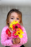 My Bouquet. A little girl holding a bouquet of gerber daisies she just picked from her mother's garden.  She's wearing a pink fuzzy shirt and looking through her Royalty Free Stock Photo