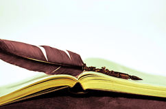 My diary and my old ink pen. Literature books and all novels of love Royalty Free Stock Photos