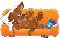 My dog 018. Illustration for children Stock Photo