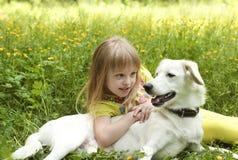 My dog. royalty free stock image