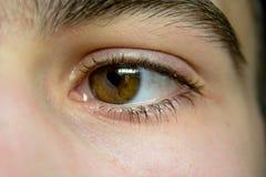 My eye Royalty Free Stock Photography