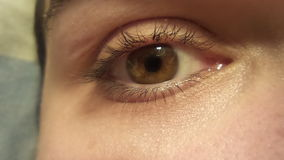 My eye royalty free stock images